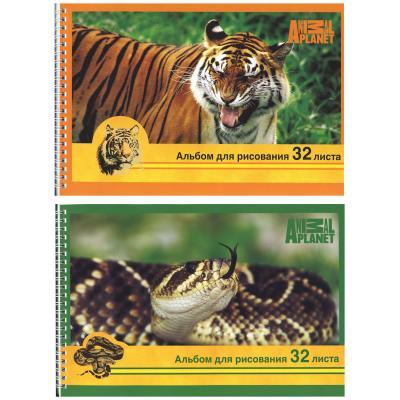 Альбом для рисования Action! ANIMAL PLANET A4 32 листа AP-AAS-32/1 в ассортименте AP-AAS-32/1