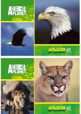 Альбом для рисования Action! ANIMAL PLANET A4 40 листов AP-AAS-40/1 AP-AAS-40/1