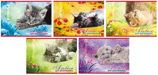 Альбом для рисования Хатбер Котята A4 20 листов 004023 20А4В/К