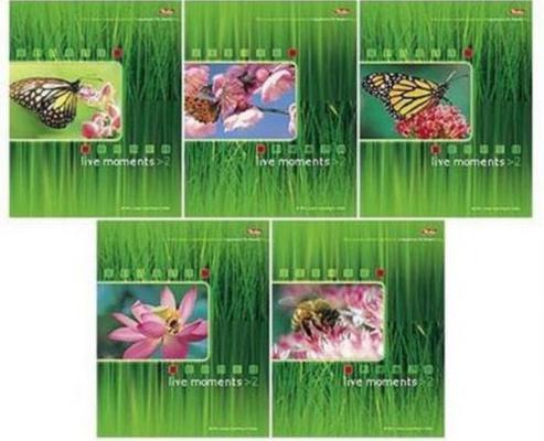 Альбом для рисования Хатбер Живые моменты A4 32 листа 004091 в ассортименте 32А4вмВ/ЖМ