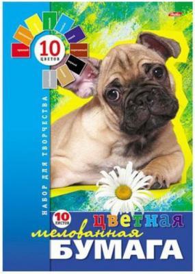 Цветная бумага Хатбер ЩЕНОК A4 16 листов 16Бц4 08053