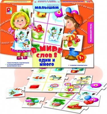 Развивающая игра Радуга В мире слов 8 Один и много С-940
