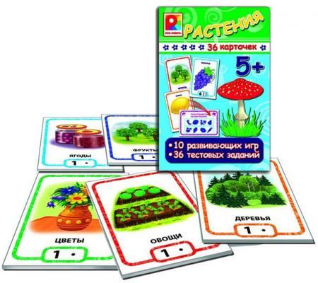 Обучающая игра Радуга Игры с карточками