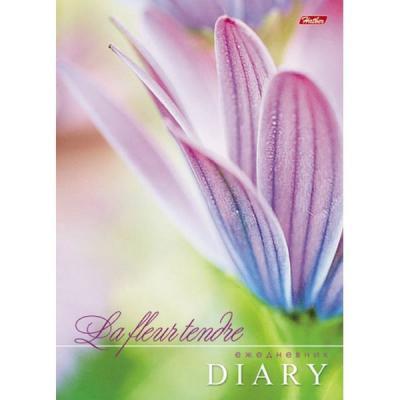 Блокнот Хатбер НЕЖНЫЕ ЦВЕТОЧКИ A6 80 листов 80ЗКтд6в1гр_10851 блокнот кофемана нежные цветы