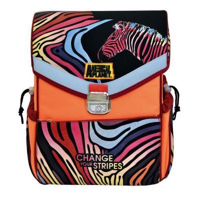 Ранец с рельефной спинкой Action! ANIMAL PLANET оранжевый черный AP-ASB4002/4/14 AP-ASB4002/4/14