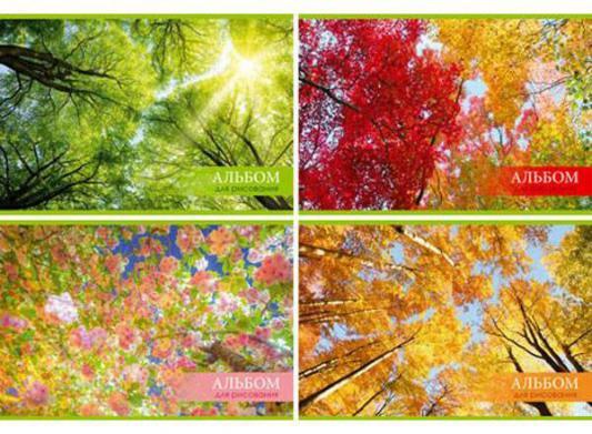 Альбом для рисования Би Джи Цветные деревья A4 32 листа 0534 в ассортименте