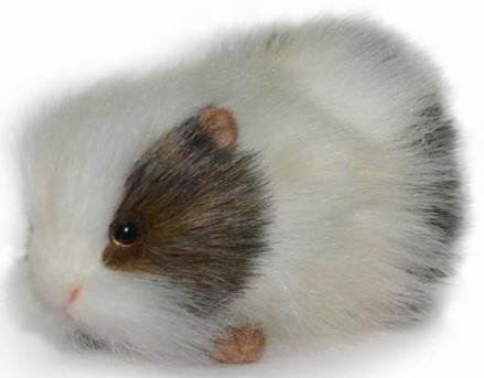 Мягкая игрушка морская свинка Hansa Морская свинка искусственный мех синтепон белый серый 20 см 4392