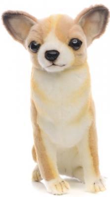 Мягкая игрушка собака Hansa Собака породы Чихуахуа искусственный мех синтепон коричневый белый 31 см 6501 мягкая игрушка собака orange чихуа kiki малиновый блеск текстиль искусственный мех розовый коричневый 25 см ld010