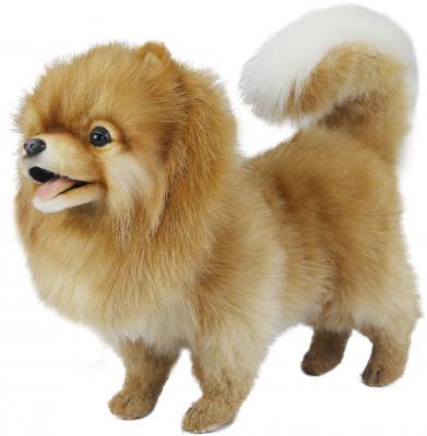 Мягкая игрушка собака Hansa Померанский шпиц искусственный мех синтепон рыжий 28 см 7018 мягкая игрушка hansa лисица 53 см 6990