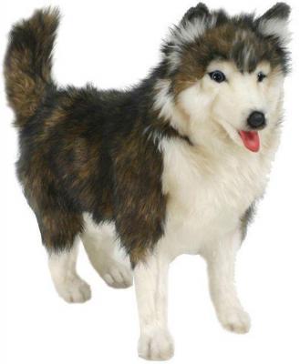 Мягкая игрушка собака Hansa Собака породы Сибирский Хаски синтепон искусственный мех белый коричневый 40 см 4824 электроплита hansa fccw 54002