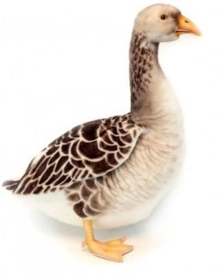 Мягкая игрушка птица Hansa Гусь искусственный мех белый серый 44 см 6303