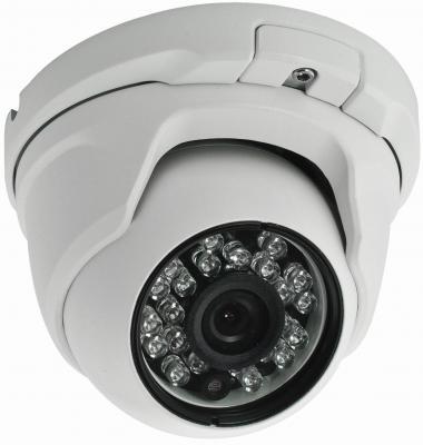 """Камера IP ActiveCam AC-D8101IR2 CMOS 1/4"""" 1280 x 720 H.264 RJ-45 LAN PoE черный"""