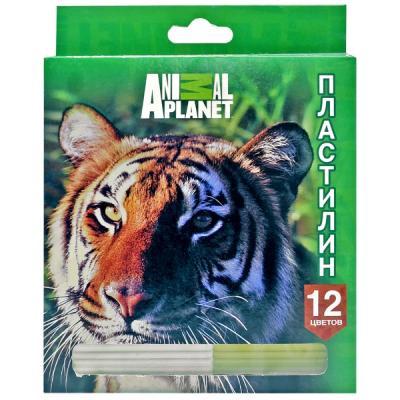 Пластилин Action! ANIMAL PLANET 12 цветов AP-MC12-240