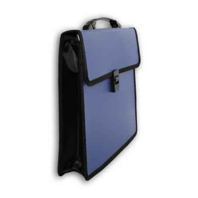 Папка-портфель без отделений, А4, ассорти IEF20/ASS