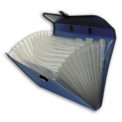 Папка - портфель с ручкой на 13 отделений, ассорти SEF811/ASS