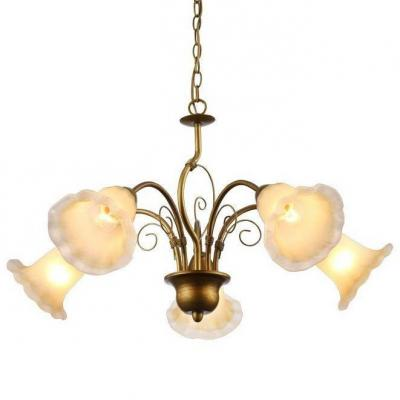 Подвесная люстра Arte Lamp 79 A9361LM-5BR