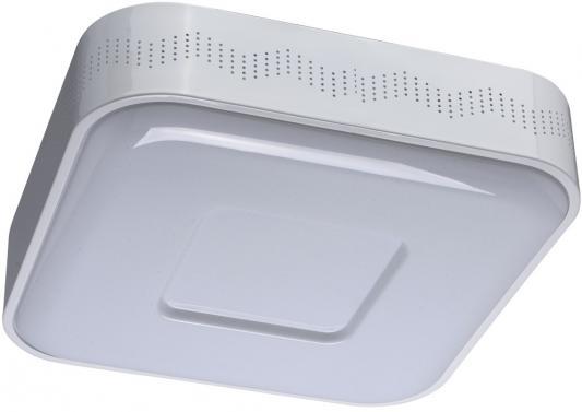 Потолочный светодиодный светильник MW-Light Ривз 674012101
