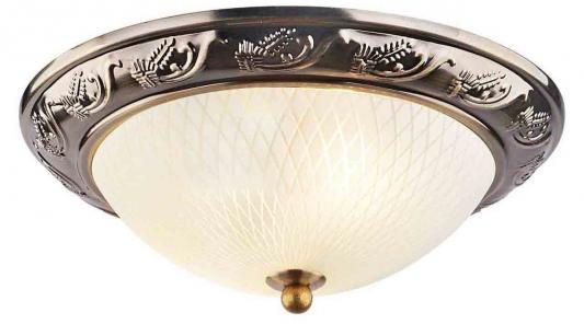 Потолочный светильник Arte Lamp 28 A3019PL-2AB