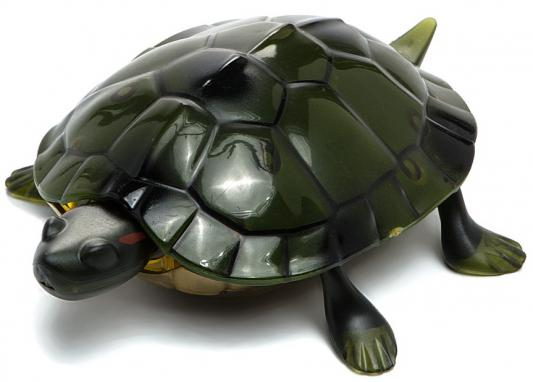 Интерактивная игрушка Shantou Gepai Черепаха от 4 лет зелёный