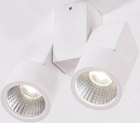 Потолочный светодиодный светильник Citilux Дубль CL556100