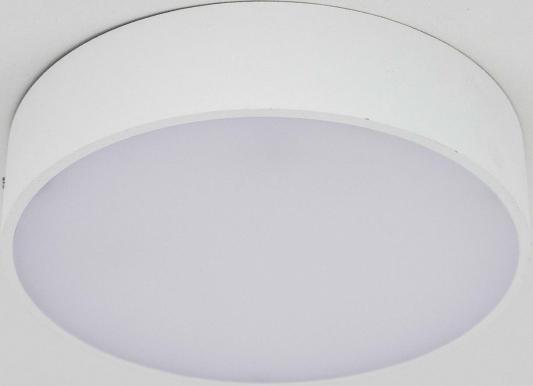 Потолочный светодиодный светильник Citilux Тао CL712R120