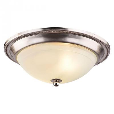 Потолочный светильник Arte Lamp 28 A3011PL-2SS
