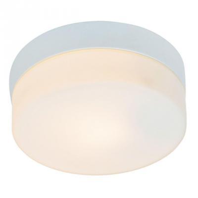 Потолочный светильник Arte Lamp Shirp A3211PL-1WH