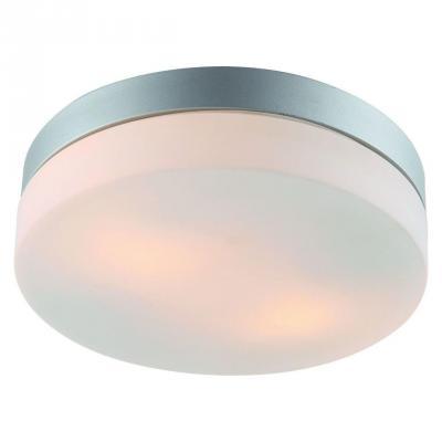 Купить Потолочный светильник Arte Lamp Shirp A3211PL-2SI