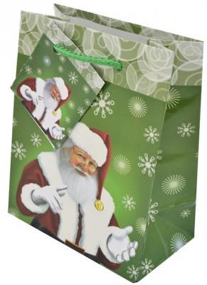 Пакет подарочный Winter Wings BG1523 11.1x13.7x6.2 cм