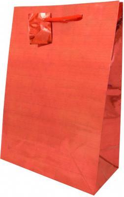 Пакет подарочный WINTER WINGS BG6682 210х300х110 мм ламинированный голография. 6 цв. пакет подарочный голография tz9495 32 45 11 6 цветов в ассортименте