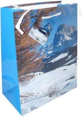 Пакет подарочный Winter Wings N13106/A 180х230х98 мм росмэн подарочный пакет петух 230 180 100 мм