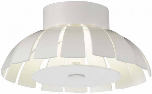 Потолочный светодиодный светильник ST Luce SL559.503.01