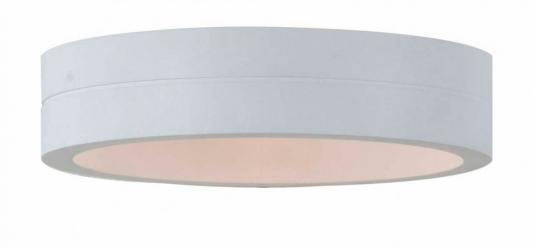 Уличный настенный светодиодный светильник ST Luce SL562.501.01