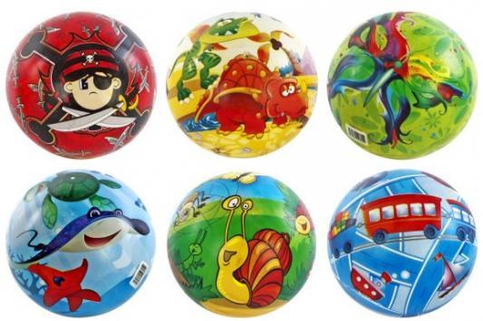 Мяч Shantou Gepai 63606 23 см в ассортименте