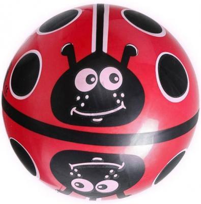 "Мяч Dema-Stil ""Божья коровка на поле"" 23 см"
