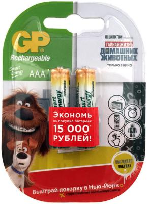 Аккумулятор GP Smart Energy 40AAAHCSV AAA NiMH 400mAh 2 шт