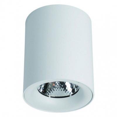Купить Потолочный светодиодный светильник Arte Lamp Facile A5112PL-1WH