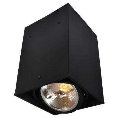 Потолочный светильник Arte Lamp Cardani A5936PL-1BK