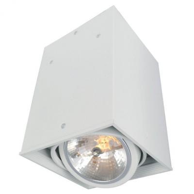 Потолочный светильник Arte Lamp Cardani A5936PL-1WH спот точечный светильник arte lamp cardani a5936pl 1wh