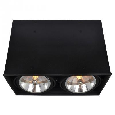 Потолочный светильник Arte Lamp Cardani A5936PL-2BK