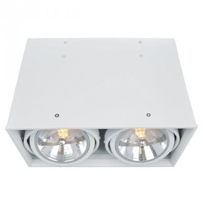 Потолочный светильник Arte Lamp Cardani A5936PL-2WH накладной светильник arte lamp cardani a5936pl 2wh
