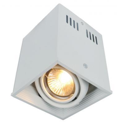 Потолочный светильник Arte Lamp Cardani A5942PL-1WH