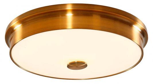 Потолочный светодиодный светильник Citilux Фостер-2 CL706232