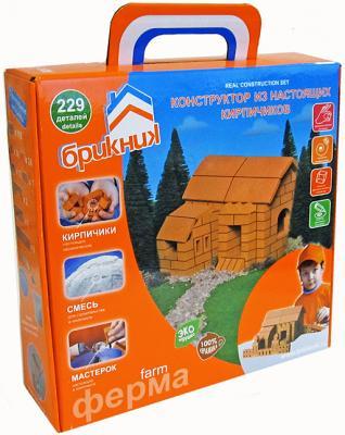 Купить Конструктор Brickmaster Ферма 229 элементов 207, Пластмассовые конструкторы