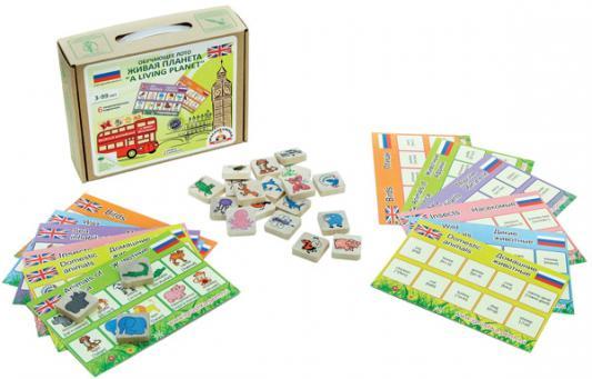 Логическая игрушка Краснокамская игрушка ЛИ-06 Живая планета английский язык 2 уровня сложности