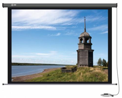 Экран настенный Cactus Professional Motoscreen CS-PSPM-152X203 152x203см 4:3 экран настенный cactus professional tension motoscreen cs pspmt 183x244 183x244см 4 3
