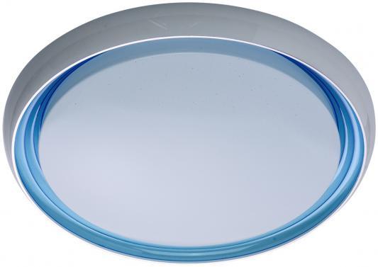 Потолочный светодиодный светильник с пультом ДУ MW-Light Ривз 674011501