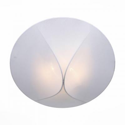 Накладной светильник ST Luce Tonico SL360.552.02