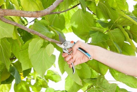 Секатор контактный Gardena B/L большой серый/черный 08906-20.000.00 сучкорез fiskars большой контактный l l 77 112580