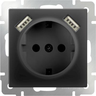 Купить Розетка с заземлением, шторками и USBx2 черный матовый WL08-SKGS-USBx2-IP20 4690389073236, Werkel